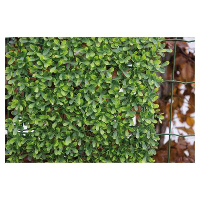 Siepe artificiale Buxus L 1 x H 1 m: prezzi e offerte online