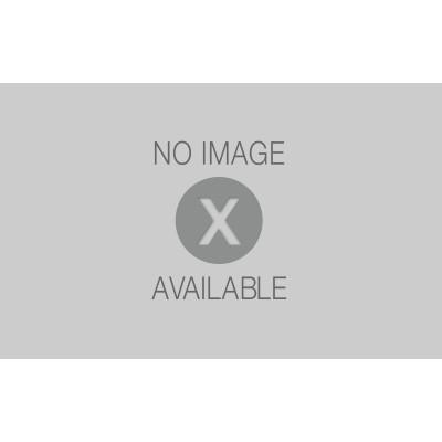 Rivestimento decorativo stonehenge beige prezzi e offerte for Piastrelle effetto pietra leroy merlin