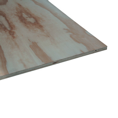 Pannello compensato multistrato pino fenolico pino 18 x for Pannelli multistrato prezzi