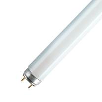 Tubo fluorescente Osram Terrai T8 18W luce fredda