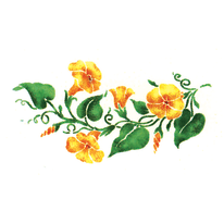 Stencil Fiori n. 400