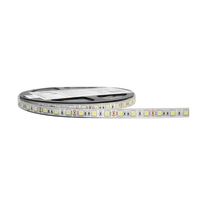 Striscia LED estensibile luce fredda m5