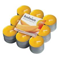 Tealight confezione 18 pezzi essenza mango