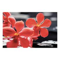 quadro su tela Red flower 95x145