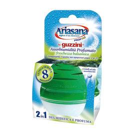 Assorbiumidità Ariasana Profumì Guzzini balsamica 45 g