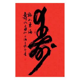 Poster Caratteri Cina 61 x 91,5 cm