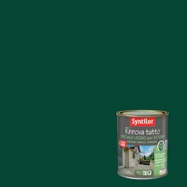 Vernice per esterno ad acqua Syntilor Rinnova Tutto verde 2,5 L