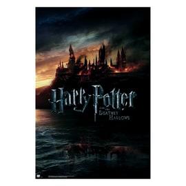 Poster Harry Potter II 61 x 91,5 cm