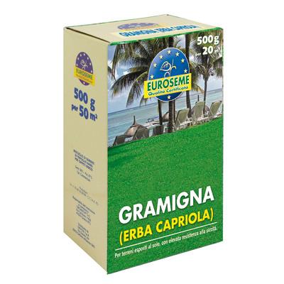 Semi per prato gramigna 0 5 kg prezzi e offerte online for Prato finto leroy merlin