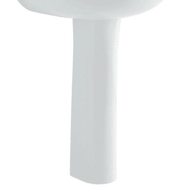 Colonna colonna colibrì 2