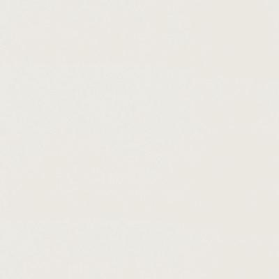Piastrella Loft Blanc 20 x 50,2 cm bianco