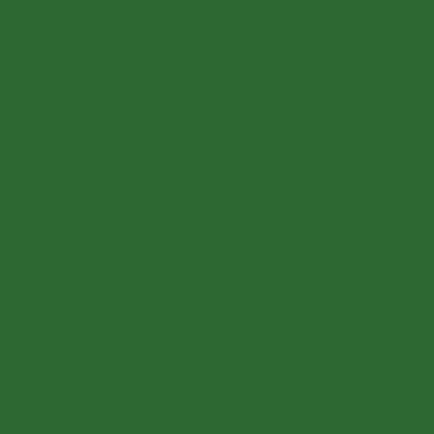 Smalto per legno da esterno base acqua SYNTILOR verde scuro 2.5 L