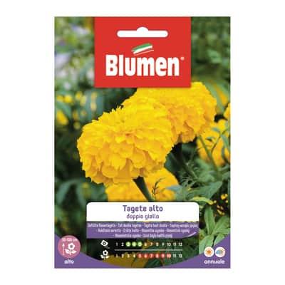 Seme fiore Tagete alto doppio giallo nan