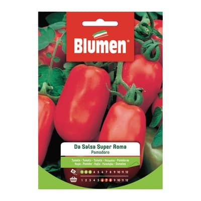 Seme per orto pomodoro salsa super roma