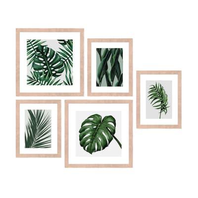 Stampa incorniciata Jungle 54x50 cm 5 pezzi