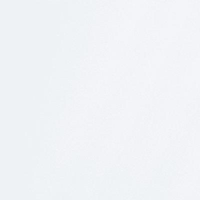 Pellicola adesiva per vetro Sabbiato trasparente 0.45x2 m