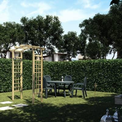 Pergola Doppia arco in legno naturale L 160 x P 72 x, H 223 cm