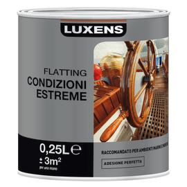 Flatting e vernici per esterno prezzi e offerte online for Vernici leroy merlin