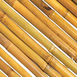 Arella Bambooflex naturale L 3 x H 2 m