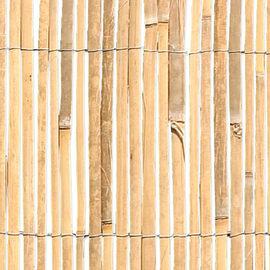 Arella mezza canna Bamboocane naturale L 5 x H 1 m