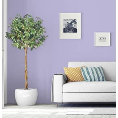 Idropittura superlavabile languid lavender 2 L Pantone