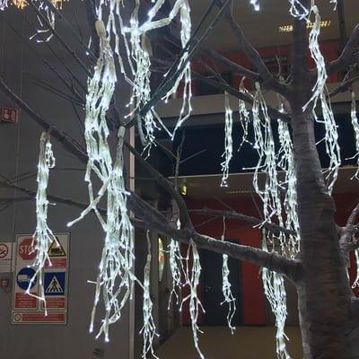 Catena 10 grappoli Minibunch 480 minilucciole Led bianca fredda 9 m