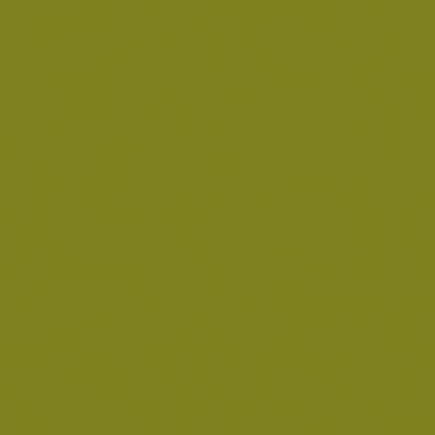 Colorante iperconcentrato ad acqua Bravo verde oliva 80 ml
